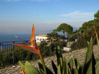 Cerca una casa per vacanze in penisola sorrentina