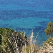 Search apartments in Cilento