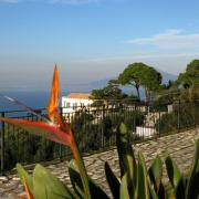 Search holiday homes on Sorrento Coast